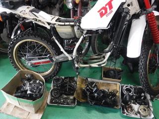 DSCF0097.JPG