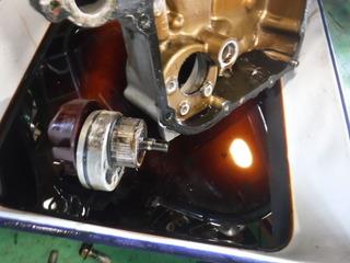 DSCF5443.JPG