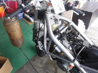 DSCF9799.JPG